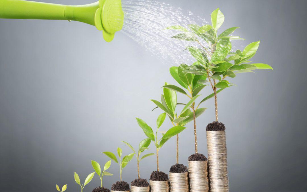 Como economizar para investir melhor: dicas para organizar a aposentadoria